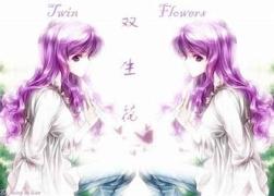 花语大全-双生花